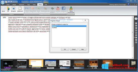 स्क्रीनशॉट Snagit Windows 8