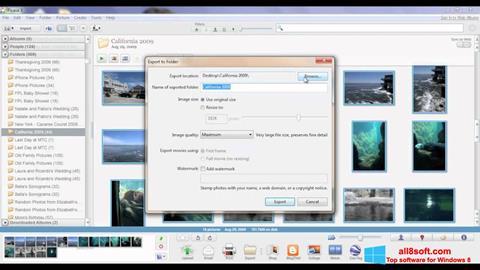 स्क्रीनशॉट Picasa Windows 8