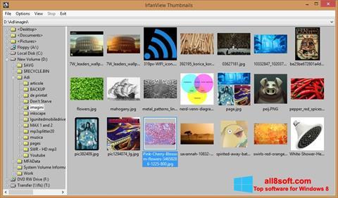 स्क्रीनशॉट IrfanView Windows 8
